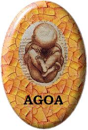 logo-AGOA